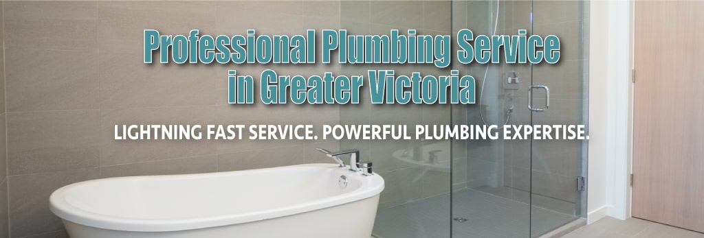 Professional Plumbing Services in Greater Vancouver by thunderbird Plumbing